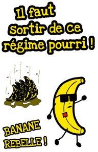 Pancarte de Banane Rebelle du 22 mai 2012.